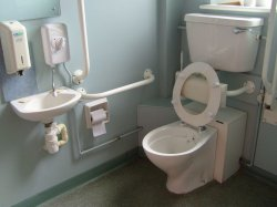 accessible toilets grab bars safety.jpg