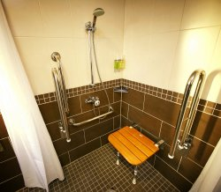 Ada grab bars Accessible Shower.JPG